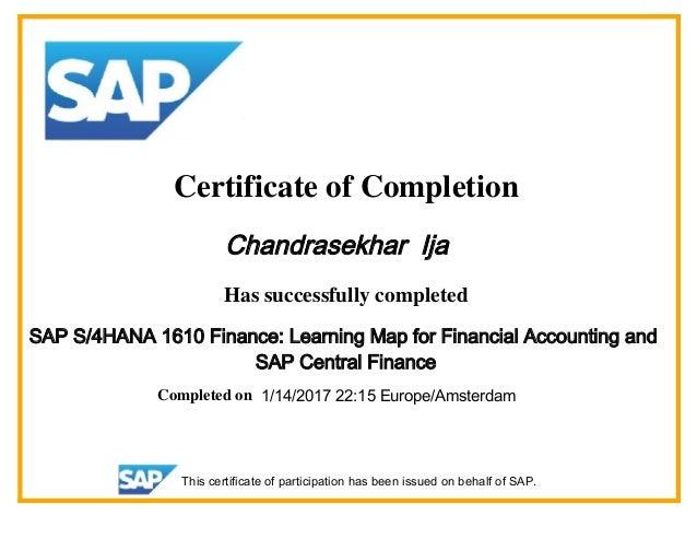 Sap S4hana 1610 Finance Financial Accounting And Central Finance