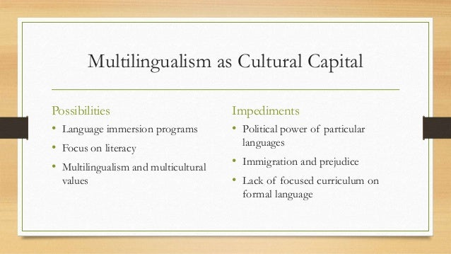 articles in multilingualism