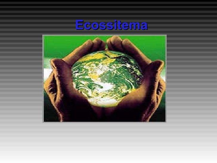 Ecossitema