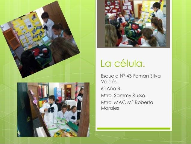 La célula. Escuela Nº 43 Fernán Silva Valdés. 6º Año B. Mtro. Sammy Russo. Mtra. MAC Mª Roberta Morales