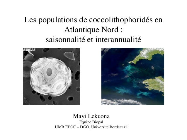 Les populations de coccolithophoridés en Atlantique Nord : saisonnalité et interannualité Mayi Lekuona Equipe Biopal UMR E...