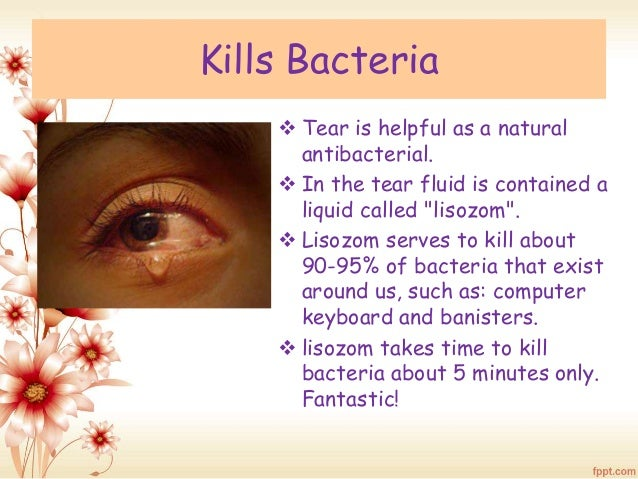 """Kills Bacteria   Tear is helpful as a natural  antibacterial.   In the tear fluid is contained a  liquid called """"lisozom..."""