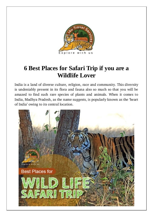6 best places for safari trip if you are a wildlife lover