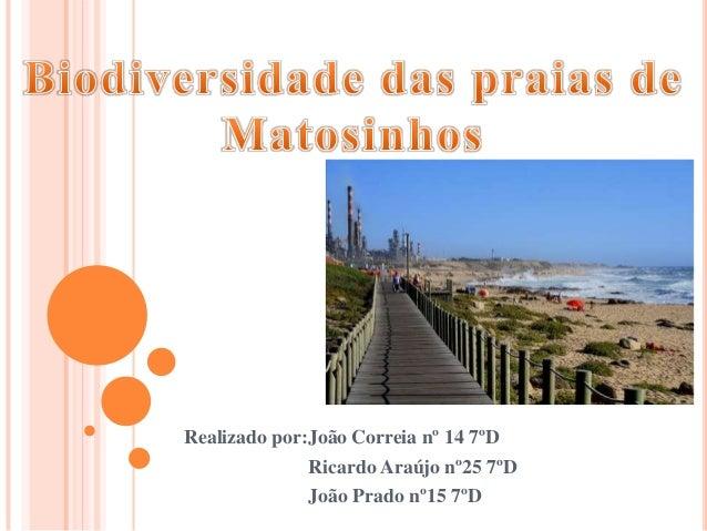 Realizado por:João Correia nº 14 7ºD Ricardo Araújo nº25 7ºD João Prado nº15 7ºD