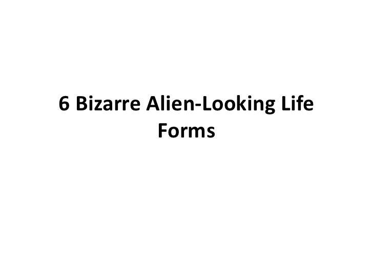 6 Bizarre Alien-Looking Life           Forms