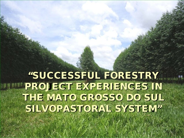"""SUCCESSFUL FORESTRYPROJECT EXPERIENCES INTHE MATO GROSSO DO SULSILVOPASTORAL SYSTEM"""