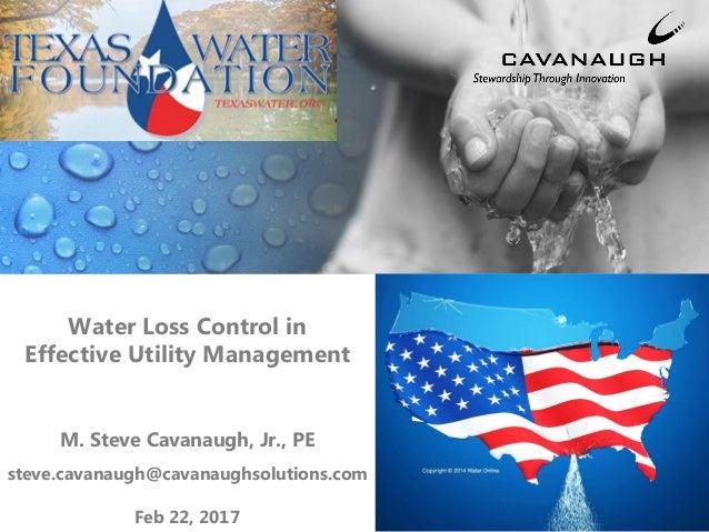 Water Loss Control in Effective Utility Management M. Steve Cavanaugh, Jr., PE steve.cavanaugh@cavanaughsolutions.com Feb ...