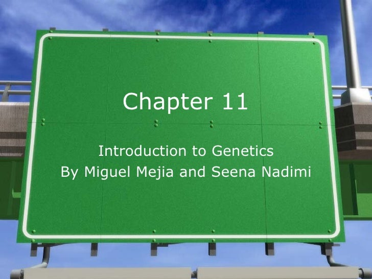 Chapter 11 Introduction to Genetics By Miguel Mejia and Seena Nadimi
