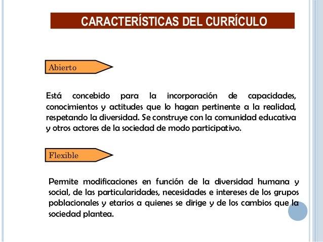 19 Diversificable CARACTERÍSTICAS DEL CURRÍCULO Instancia regional. Instancia local. Instancia Institucional.