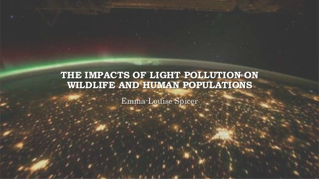 THE IMPACTS OF LIGHT POLLUTION ON WILDLIFE AND HUMAN POPULATIONS Emma-Louise Spicer