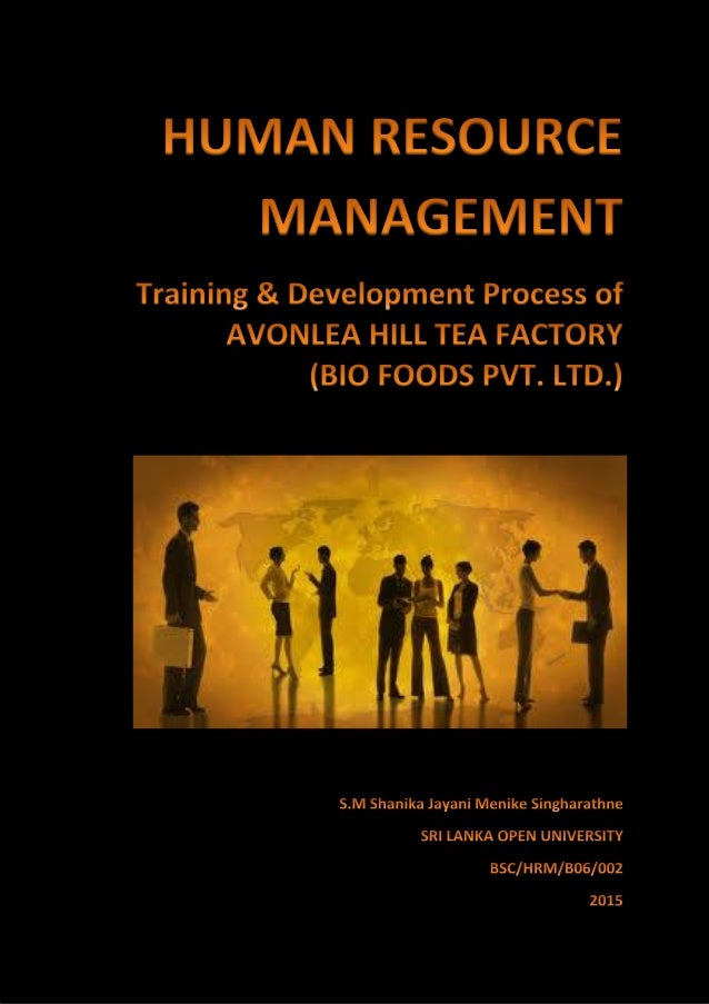 Dissertation report on training and development