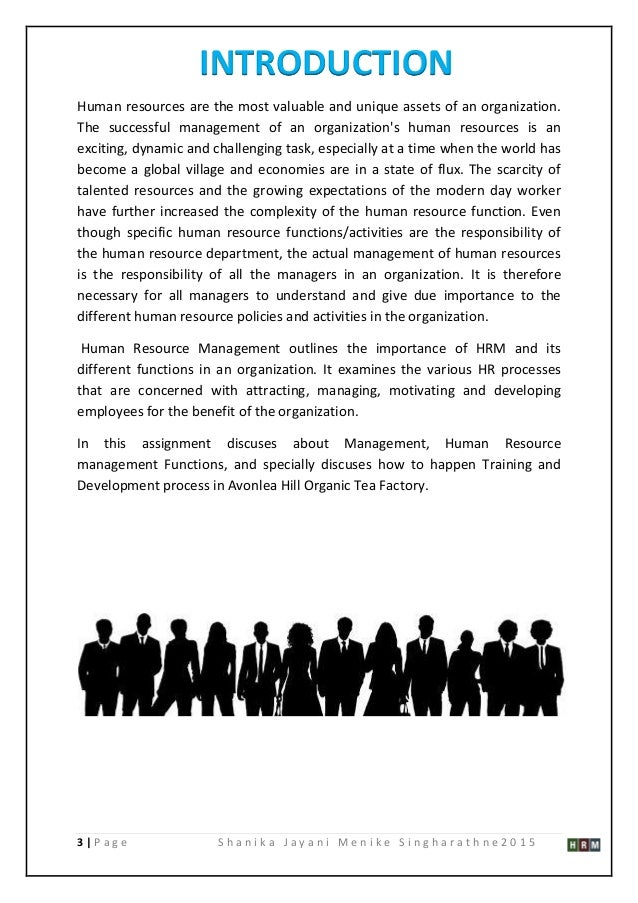 management and human resource development essay