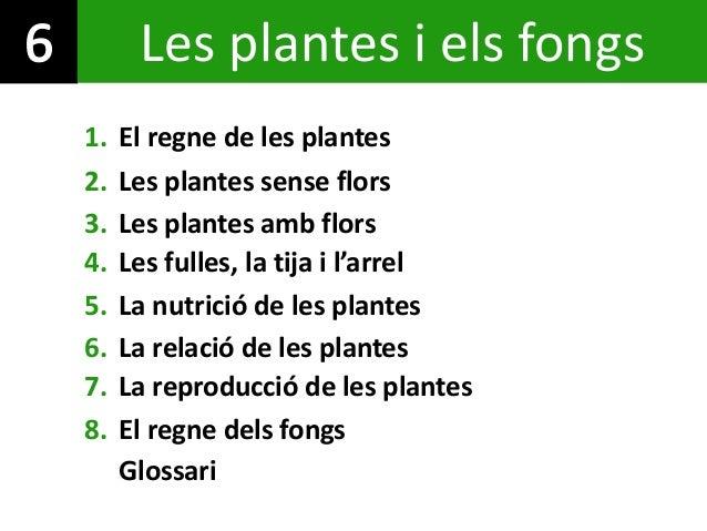 1. El regne de les plantes 4. Les fulles, la tija i l'arrel 8. El regne dels fongs 5. La nutrició de les plantes 7. La rep...