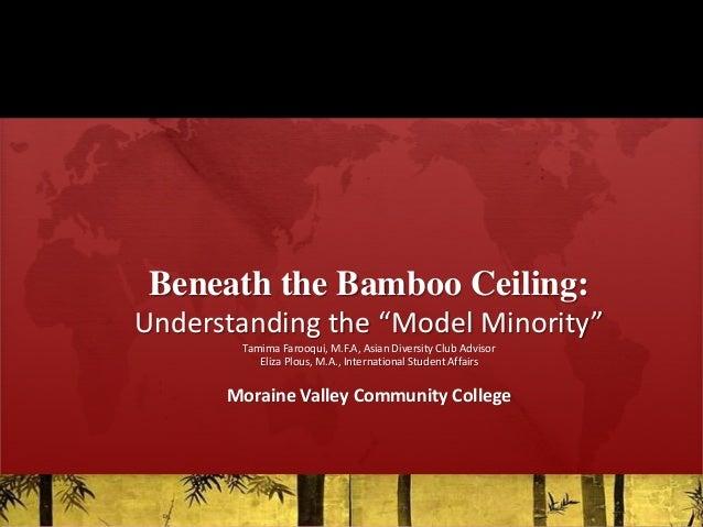 "Beneath the Bamboo Ceiling: Understanding the ""Model Minority"" Tamima Farooqui, M.F.A, Asian Diversity Club Advisor Eliza ..."
