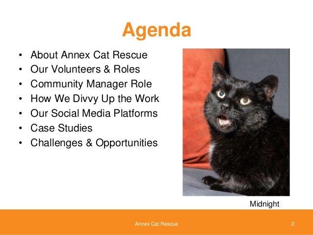 Annex Cat Rescue Hours