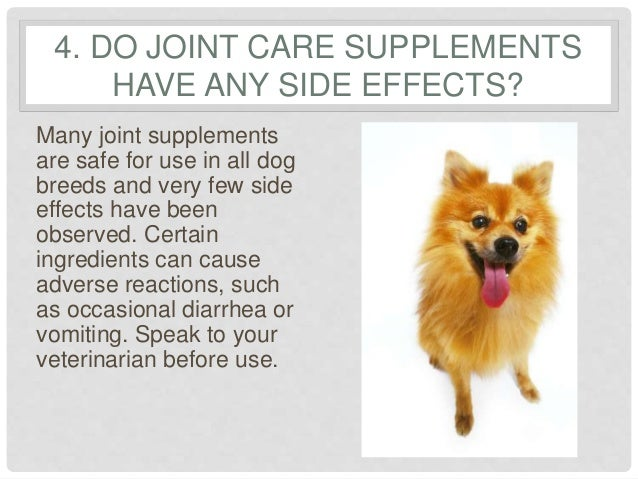 6 Frequently Asked Questions Regarding Joint Supplements ...