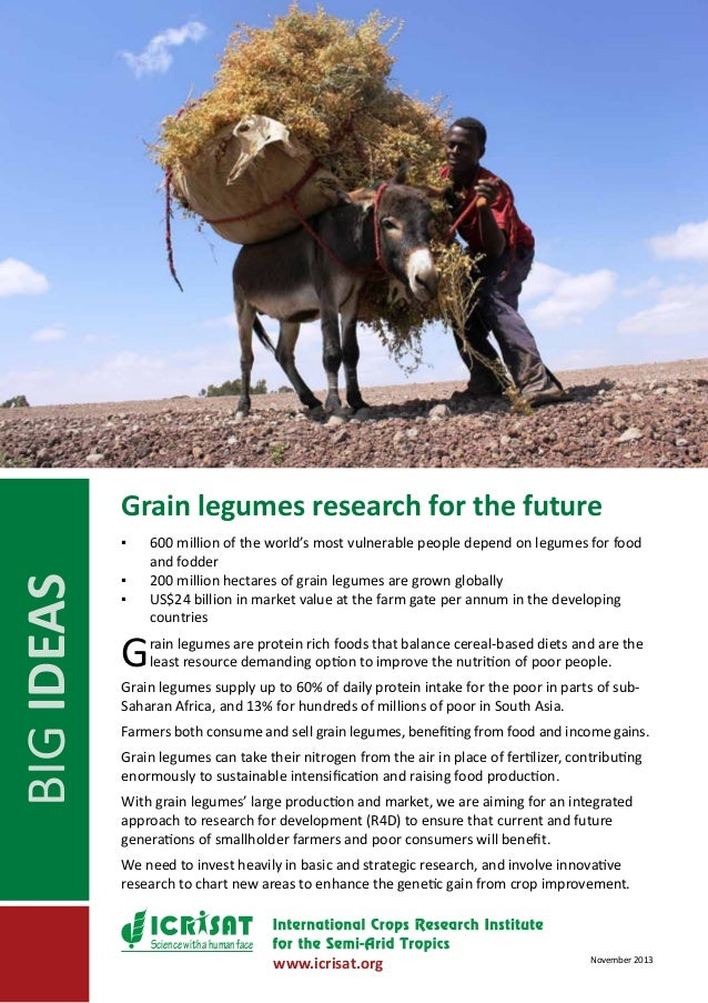 Grain legumes research for the future  BIG IDEAS  ▪▪ ▪▪ ▪▪  G  600 million of the world's most vulnerable people depend on...