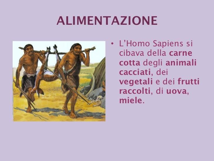 <ul><li>L'Homo Sapiens si cibava della  carne cotta  degli  animali cacciati , dei  vegetali  e dei  frutti   raccolti , d...