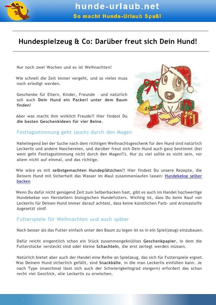 Hundespielzeug & Co: Darüber freut sich Dein Hund!Nur noch zwei Wochen und es ist Weihnachten!Wie schnell die Zeit immer v...