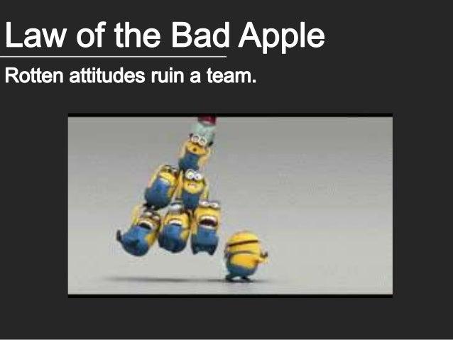 6 Indisputable Laws of Teamwork