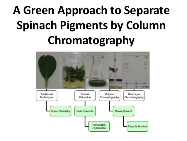 Separation of Plant Pigments Using Chromatography