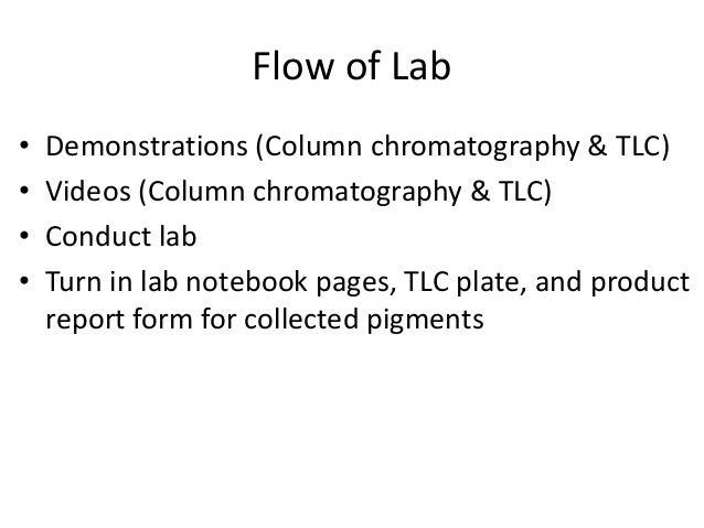 lab report plant pigment