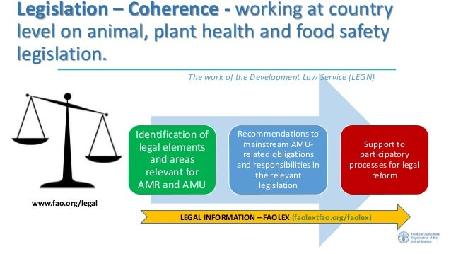 Main Areas Of Food Health And Hygiene Law