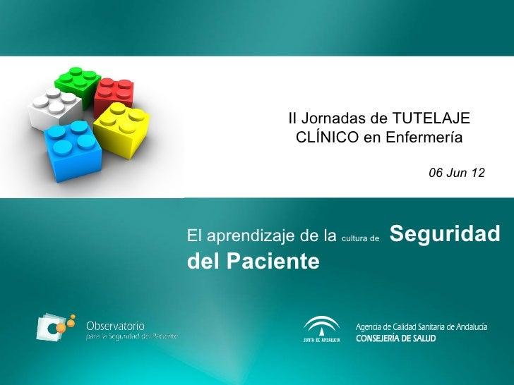 II Jornadas de TUTELAJE                  CLÍNICO en Enfermería                                     06 Jun 12El aprendizaje...