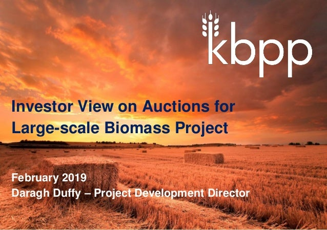 Investor View on Auctions for Large-scale Biomass Project February 2019 Daragh Duffy – Project Development Director