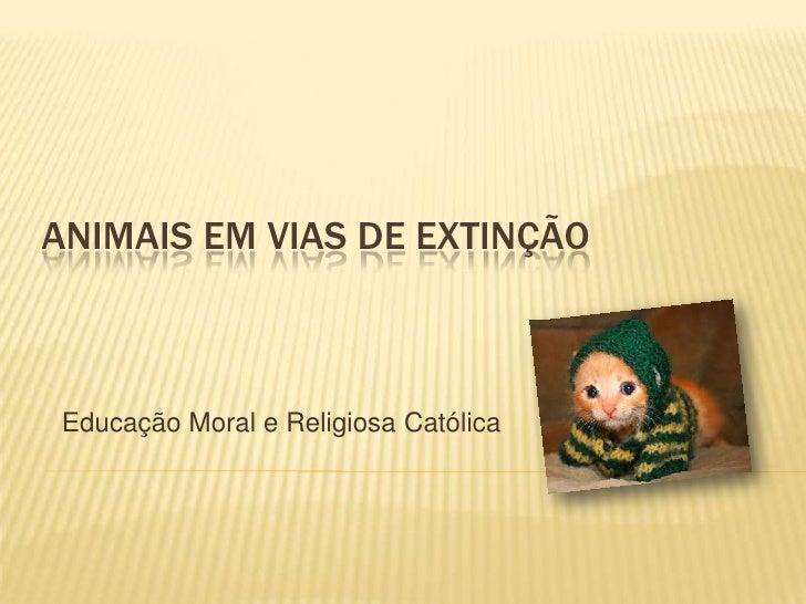 ANIMAIS EM VIAS DE EXTINÇÃO Educação Moral e Religiosa Católica