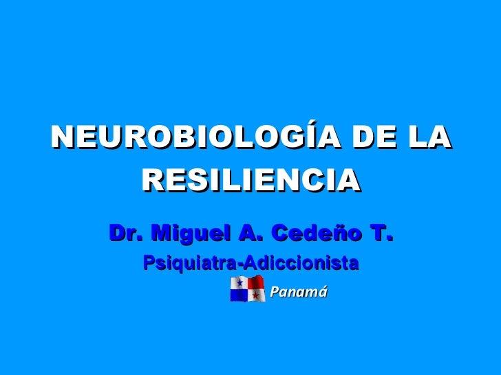NEUROBIOLOGÍA DE LA RESILIENCIA Dr. Miguel A. Cedeño T. Psiquiatra-Adiccionista Panamá