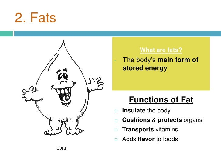 Image result for fat function