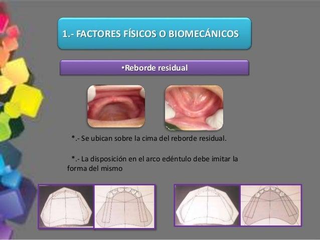 Los dientes escogidos deben proveer cambios positivos en la apariencia y tonicidad tanto de los labios como de la expresió...
