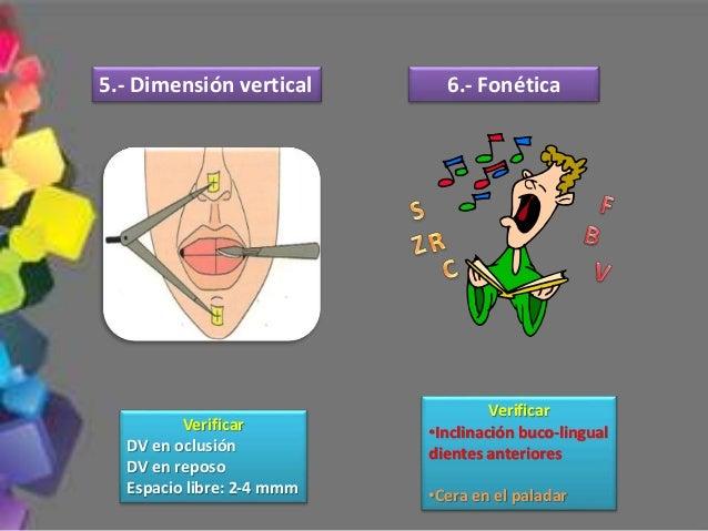 Los contactos indispensables son en los segundos molares simultáneamente con los incisivos 5.- Durante los movimientos exc...