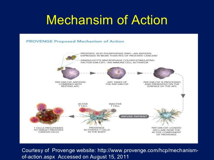 Cialis bph mechanism of action