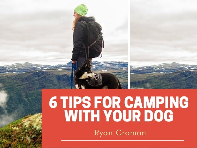 6 TIPS FOR CAMPING WITH YOUR DOG Ryan Croman