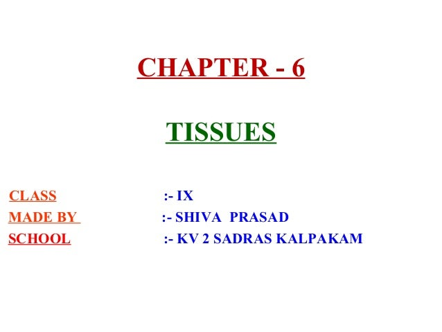 CHAPTER - 6 TISSUES CLASS :- IX MADE BY :- SHIVA PRASAD SCHOOL :- KV 2 SADRAS KALPAKAM