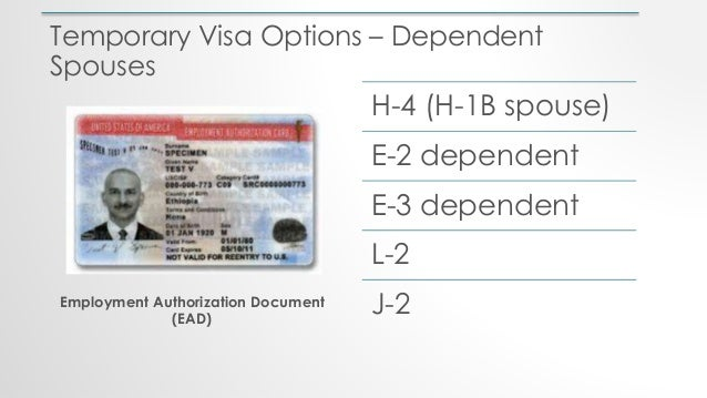 Temporary Visa Options – Dependent Spouses H-4 (H-1B spouse) E-2 dependent E-3 dependent L-2 J-2Employment Authorization D...