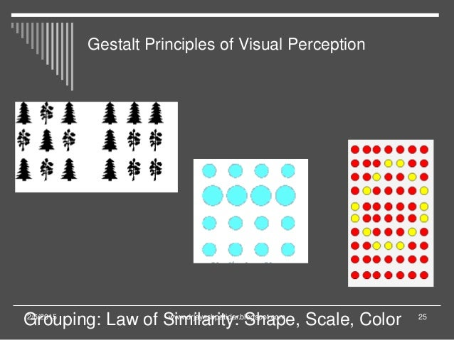 Vision and perception of congress and legislation