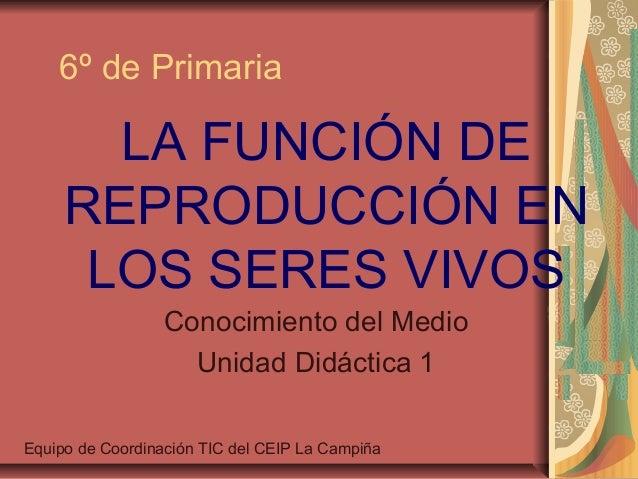 6º de Primaria       LA FUNCIÓN DE     REPRODUCCIÓN EN      LOS SERES VIVOS                 Conocimiento del Medio        ...