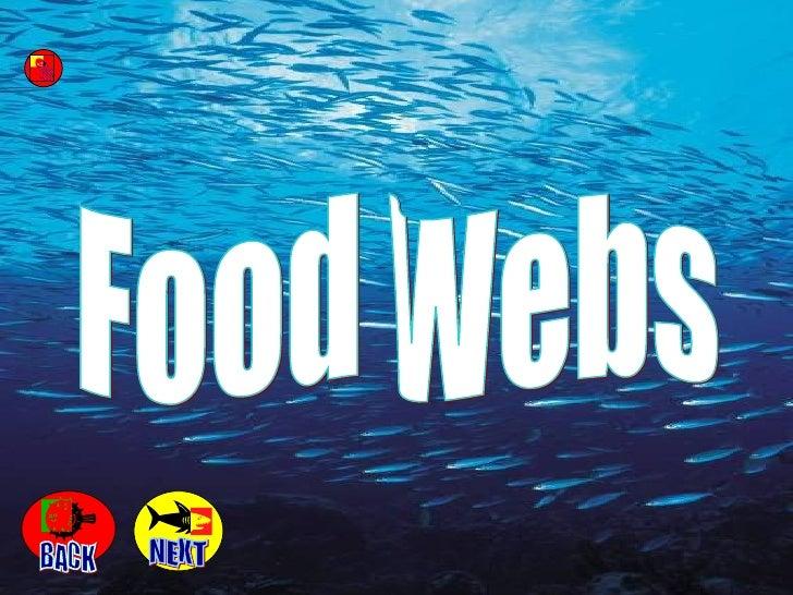 Food Webs NEXT BACK