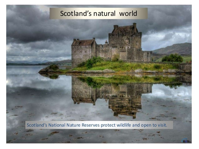Scotland's natural worldScotland's National Nature Reserves protect wildlife and open to visit.