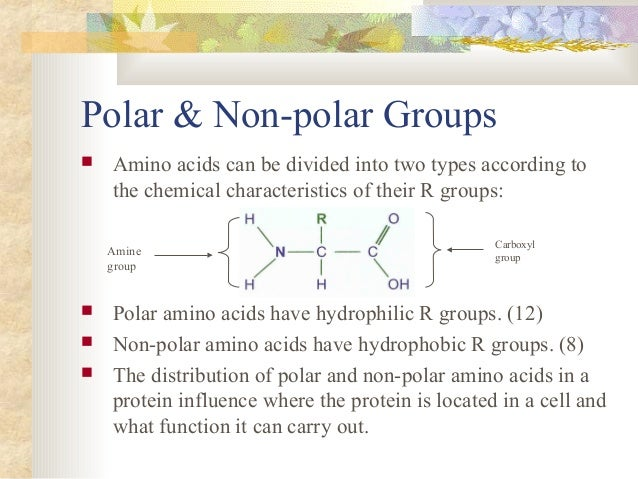 A description of proteins composed of polypeptide chains and non protein groups