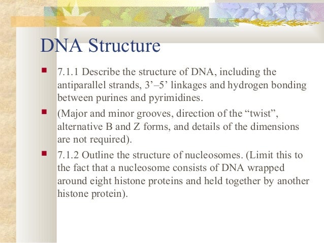 1 describe the structure of dna Learn about the structure of dna and how to recognize all the parts in this video.