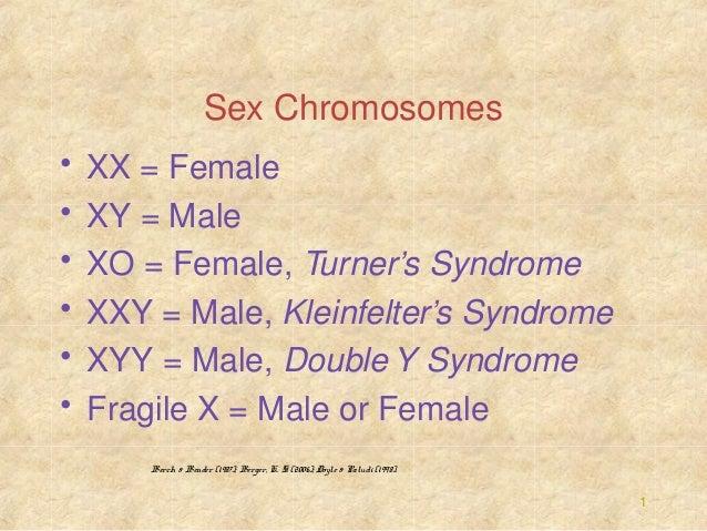 Sex Chromosomes • • • • • •  XX = Female XY = Male XO = Female, Turner's Syndrome XXY = Male, Kleinfelter's Syndrome XYY =...