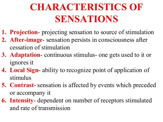 characteristics of sensation