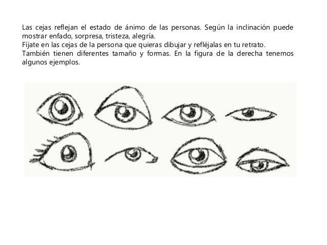 Las cejas reflejan el estado de ánimo de las personas. Según la inclinación puede  mostrar enfado, sorpresa, tristeza, ale...