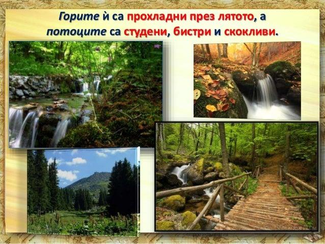 От нея извира р.Струма.  В планината се срещат много редки растения  и затова тя е обявена за природен парк.