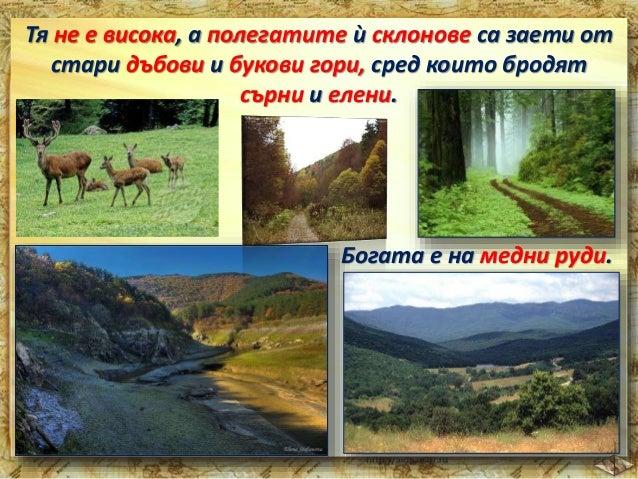 Плодородни са почвите на  Задбалканските полета.  план