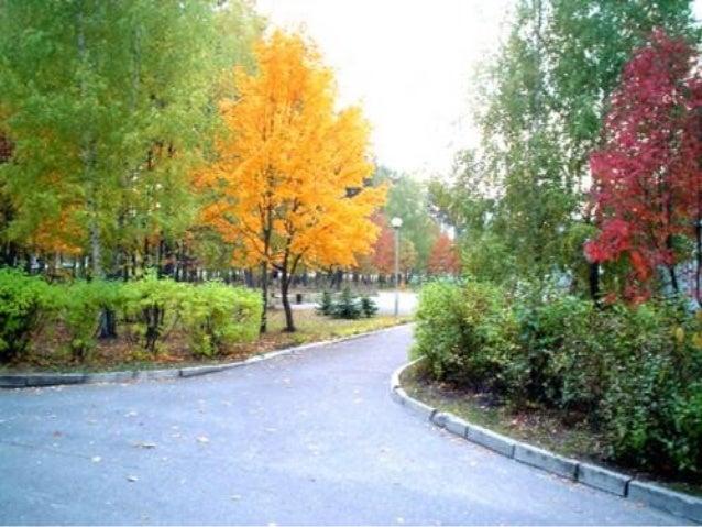 • Im September ist oft das Wetter . • Die Blätter an den Bäumen sind bunt: , , . • Sie tanzen und fallen auf die . • Die S...